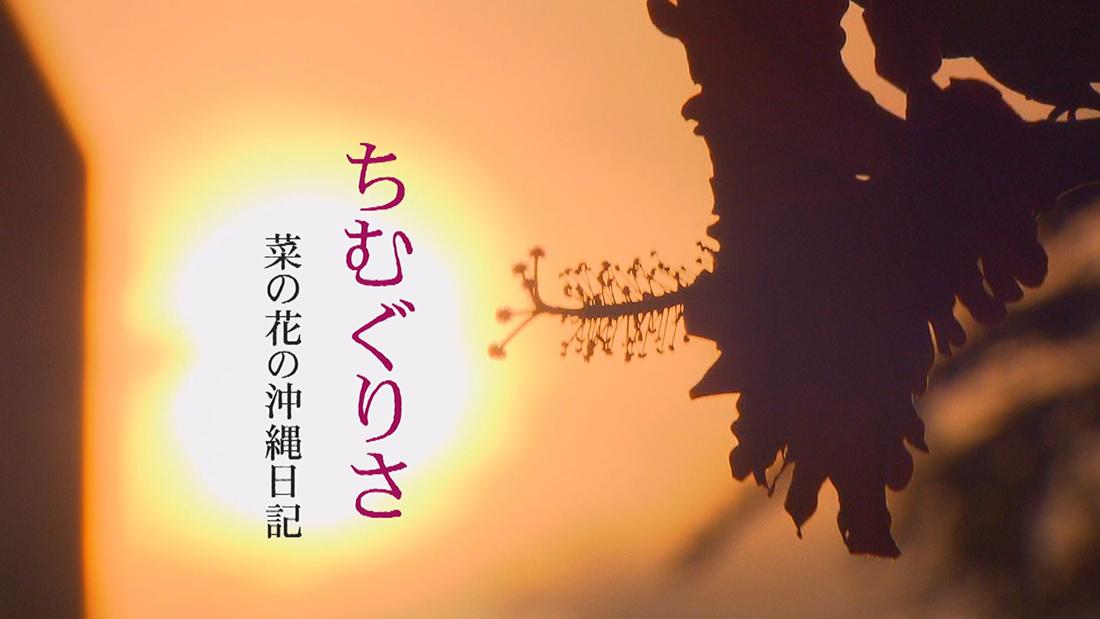「菜の花の沖縄日記」より